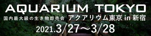 熱帯魚イベントアクアリウムバス